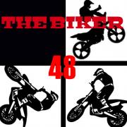 THE BIKER 48